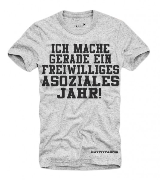 Shirt FREIWILLIGES ASOZIALES JAHR, grau